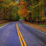 find out where to find the best finger lakes fall foliage