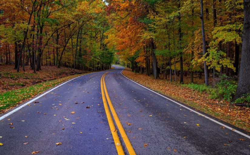 Where to Find the Best Finger Lakes Fall Foliage