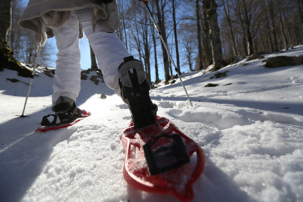 Where to Experience the Top 5 Winter Activities in the Finger Lakes