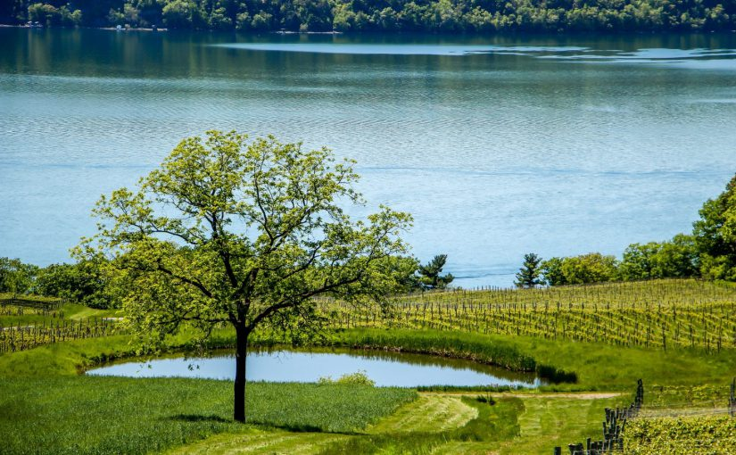 spending time at the lake is one of the best Cayuga Lake Attractions