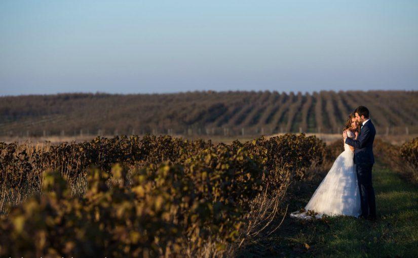 finger lakes weddings next to a vineyard