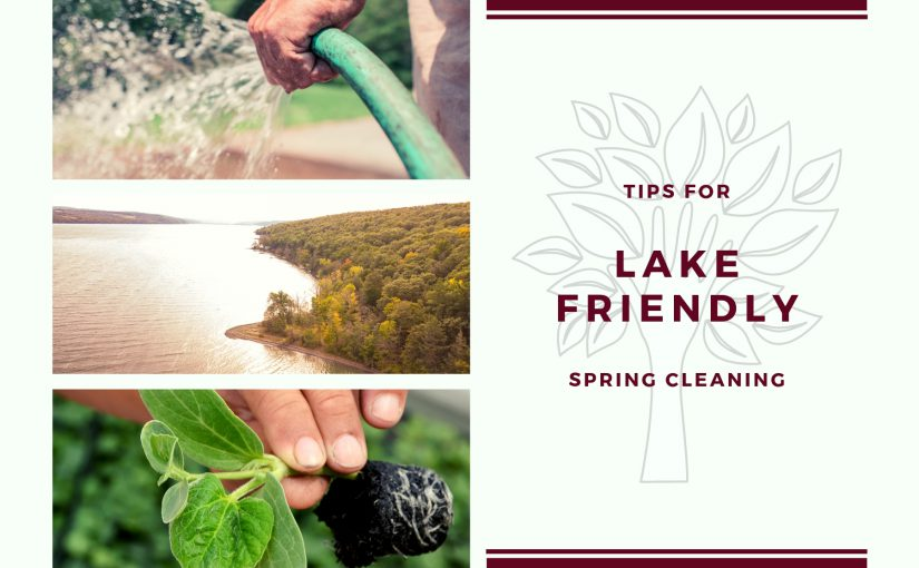 Tips for lake-friendly spring cleaning