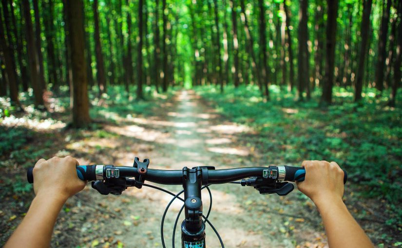 What Are the Best Bike Trails in the Finger Lakes?