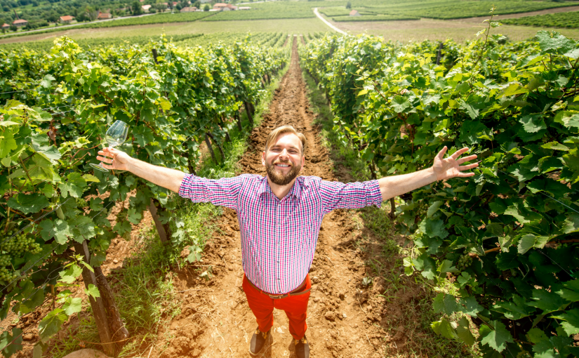 4 Iconic Finger Lakes Wine Trails You Need to Sip Your Way Through