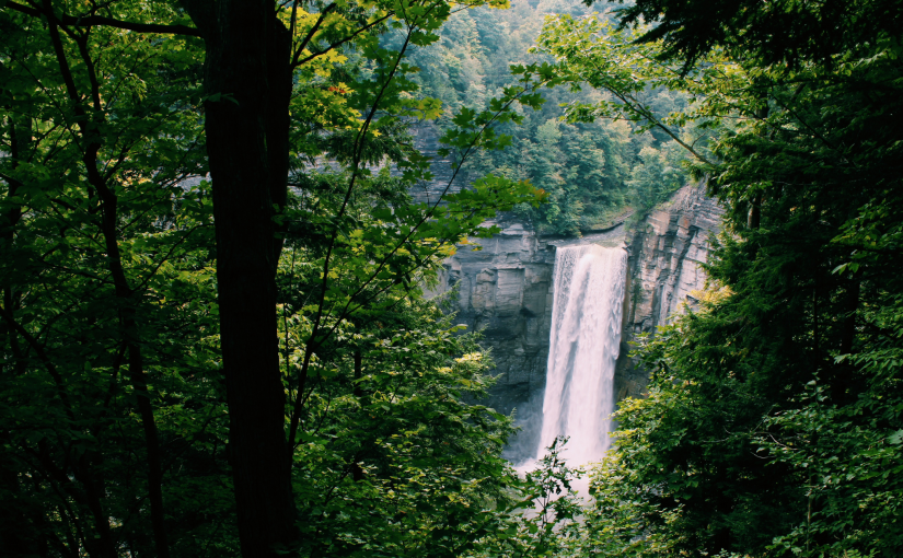 The Best Things to Do During Your Long Weekend in the Finger Lakes